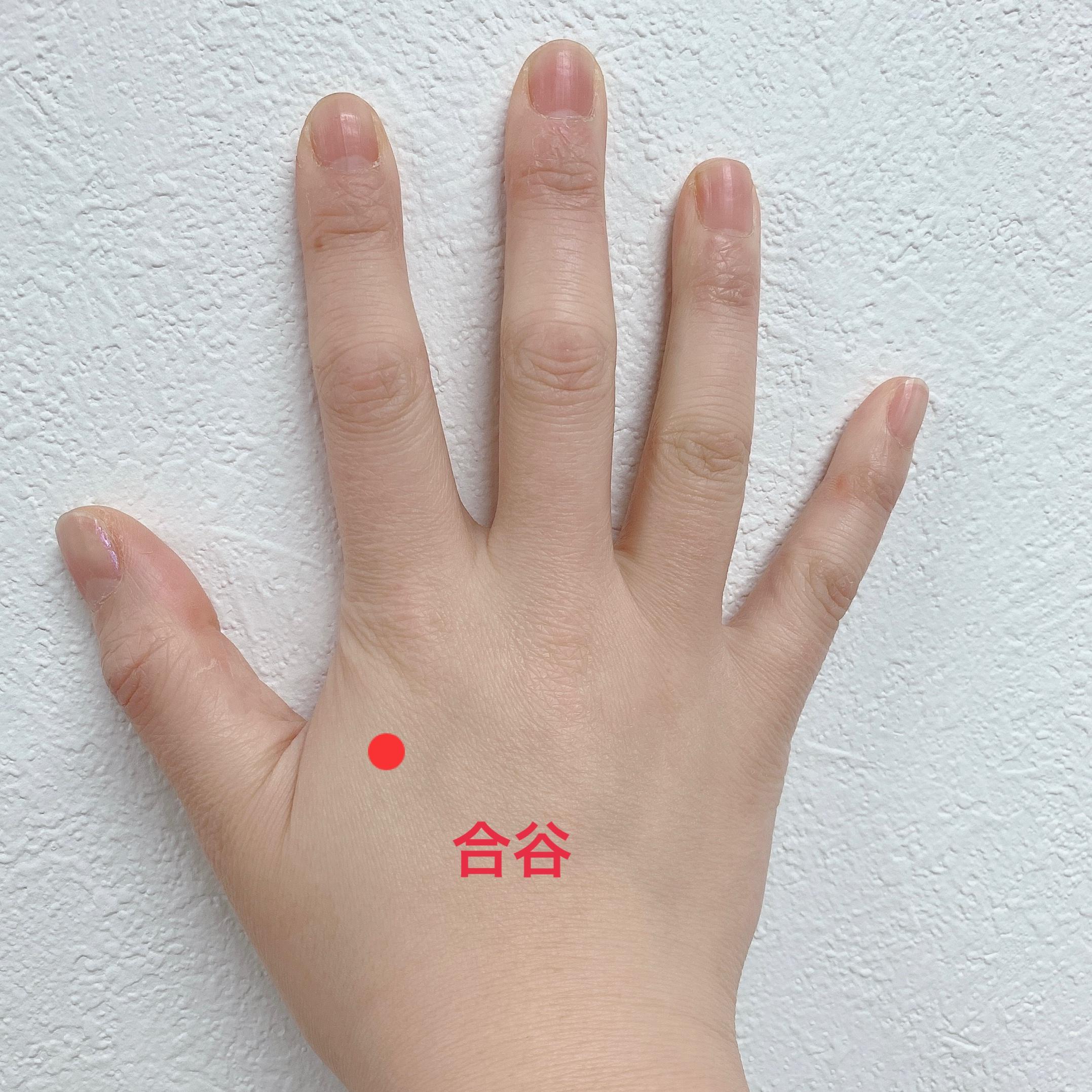 手の甲 合谷
